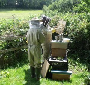 Pembrokeshire Beekeepers