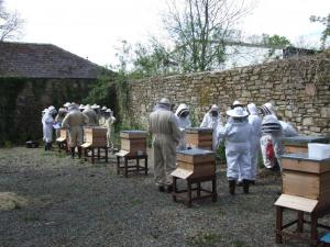 beekeeper-training-at-scolton-manor