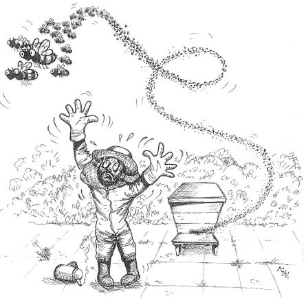 Aly Bee Swarm Cartoon