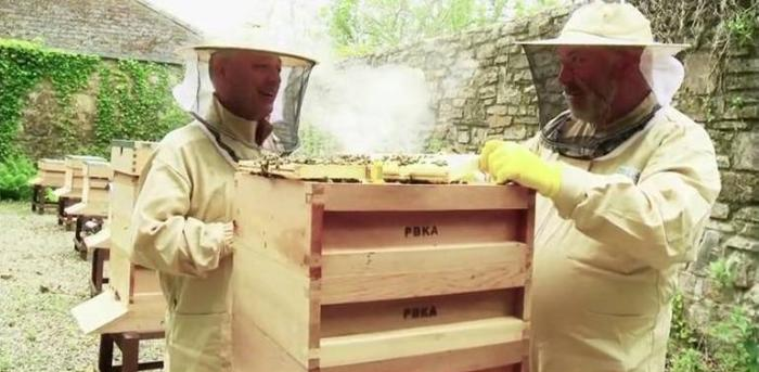 Working together in the new apiary