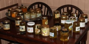 Honey samples for tasting